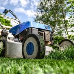 Lawnmower in a yard